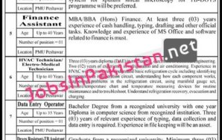 Donor Funded Project NGO Jobs kpk 2020 396x1024 1